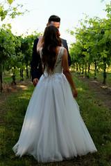 Paula & Daniel - The gown (marti.labruna) Tags: weddingday weddingdress weddinggown wedding marriedcouple justmarried married couple happiness tenderness love vineyard bride brideandgroom groom