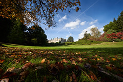 Sheffield Park Gardens (Splat Photo) Tags: sheffield park gardens sussex sony a7iii a7m3 sel1224g 1224f4 1224 1224g autumn leaves leaf trees 12mm ilce7m3
