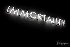 Immortality (PaulHoo) Tags: fujifilm x70 urbex decay breda bredaphoto vintage 2018 wall brick interior industrial immortality contrast neon light