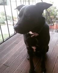 This is my good side mum. (Jaycee1) Tags: ifttt instagram