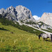 Salzburger Alpen