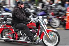 2018-09-23 Oyster Run (06) (2048x1360) (-jon) Tags: anacortes skagitcounty skagit washingtonstate washington salishsea fidalgoisland sanjuanislands 2018 2018oysterrun oysterrun motorcycle bike biker chrome motion blur slowshutterspeedpan a266122photographyproduction