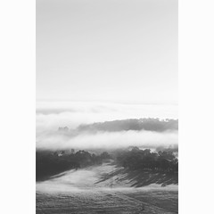 (Bron.Wolff) Tags: fields light foggy mist monochrome nature landscape