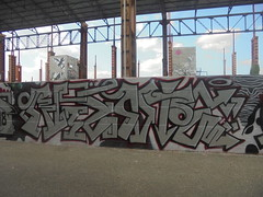 497 (en-ri) Tags: niente grigio arrow nero rosso parco dora torino wall muro graffiti writing