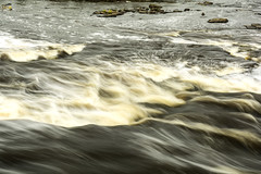 rapid flow from lower falls of the Tahquamenon river (TAC.Photography) Tags: waterfalls river flowing rapids tahquamenon stream michiganriver statepark michiganstatepark upriver upperpeninsula nikon nikoncamera tomclark tomclarknet tacphotography upperpeninsulamichigan