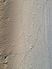 Bird tracks in the sand (nydavid1234) Tags: iphone iphoneography birdtracks sand beach abstract shadows waves minimal minimalist tracks contrast chiaroscuro