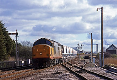 37674 hauling a Blackpool Dries-Fowey Docks train of china clay in CDAs past Par on 31March1988. (mikul44171) Tags: par cda lowerquadrant signal bracketsignal railfreight redstripe dirty 37674