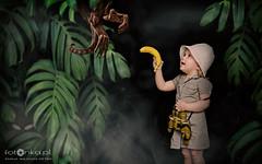 In the jungle (fotonka.pl) Tags: wilgosz kochamylaure wwwkochamylaurepl dzieci dziecko dziewczynka kids kid children child girl ludzie people canon canoneos6d photography photographer babyphoto babyphotos kidsphotography kidsphotos kidsphotographer kidsphoto familyphotographer familyphoto familyphotography familyphotos childrenphoto childrenphotography childrenphotographer childrenphotos outdoor sigma sigmaart35mm14 kolor color fun uśmiech usmiech smile portret portrait kaja childhood childmemories childhoodmemories jungle safari africa animal animals monkey photoshop photo photos photoshoot travel traveler banana