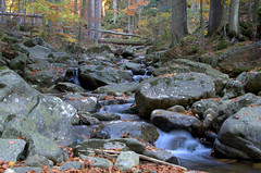 Riesbach, Bodenmais (Kurt Haberl) Tags: riesbach bodenmais landkreis deggendorf regen bayerischer wald bavarian forest bayern bavaria wood bach creek schlucht natur nature naturschutzgebiet niederbayern lower wasser water outdoor landschaft landscape