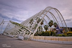 L'Umbracle (CAC). (October 2018). València (Explore Oct 17, 2018 #124) (Abariltur) Tags: abariltur castellón spain nikond90 afsdxnikkor1024mmf3545ged valencia ciutatdelesartsidelesciències cac lumbracle santiagocalatrava valència october2018