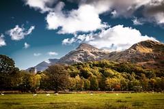Llanberis (lowribearmanphotography) Tags: snowdonia llanberis mountains landscape castle dolbadarn eryri view scenic scenery cymru wales