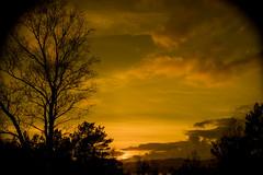 Norwegian sunset (jan-reri) Tags: sunset wood forest landscape norway tree sky clouds dusk