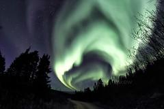 Aurora Borealis, Fairbanks, AK, October 2018 (a2md88) Tags: auroraborealis fairbanks fairbanksak fairbanksaurora akaurora auroraalaska