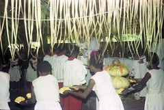 Album1-49-009b (Stichting Papua Erfgoed) Tags: mimika kamoro stichtingpapuaerfgoed pace nederlandsnieuwguinea papua irianjaya irianbarat