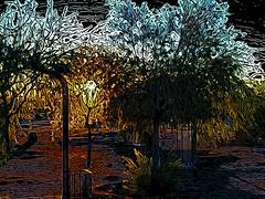Backlight (lindyginn) Tags: ethereal surreal watercolor dream light flora garden dark ginn iphoto ipad finger painting mobile