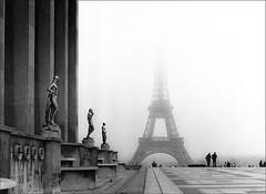 Palais du Trocadéro et la tour Eiffel (jacques-tati) Tags: palais chaillot trocadéro toureiffel paris france hasselblad 500cm brume monochrome nb bw architecture