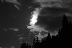 River Bridge (Tony Pulokas) Tags: rogueriver forest oldgrowth motionblur oregon autumn fall tilt night douglasfir blur bokeh moon star