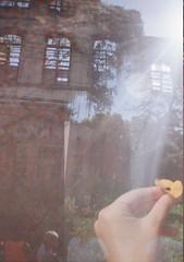 (flordebarro) Tags: arthur bispo do rosario caps taquara rio de janeiro yashica fx3 portra400 expired film