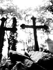 Cemetery stones (Darek Drapala) Tags: cemetery cemeteries cementary cementery cross store stones bw blackwhite blackandwhite mood panasonic poland polska panasonicg5 powazki lumix light warsaw warszawa