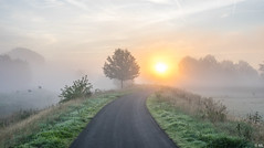 Sunrise with Mist (Martine Lambrechts) Tags: sunrise with mist morning landscape nature tree