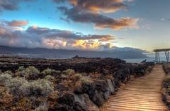 Path / Camino (López Pablo) Tags: cloud sunset wood path bush sea blue brown laspuntas elhierro canary island spain nikon d7200 hdr nature