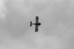 IMG_5224 BW edit (routemaster2217) Tags: clactononsea clactonairshow clactonairshow2018 airshow airdisplay aviation aircraft aeroplane bremontgreatwardisplayteam biplane triplane wwi worldwarone worldwar1 greatwar