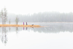 walking a dog on a misty morning (VisitLakeland) Tags: finland lakeland people aamu autumn dog järvi koira lake luonto maisema morning nature outdoor scenery sumu syksy