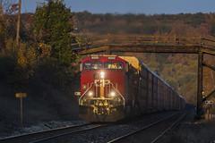 CP 8000 / CP 651 (Nicoli OZ Mathews) Tags: trains train cprail fall fallcolours light canada railroad rail railway locomotive raillway steel sunset bridge