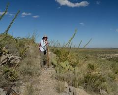 2018-09-30 Guadalupe Mountains NP 8 (JanetandPhil) Tags: 2018naturepreservesvariouslocations 20180910artxaznmvacation guadalupemountainsnationalpark guadalupemountains nationalpark nikon nikkor d4 2470mmf28