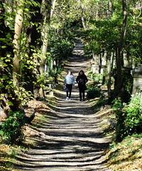 Highgate Cemetery (London Less Travelled) Tags: england london hampstead highgate cemetery grave tomb uk unitedkingdom city urban britain
