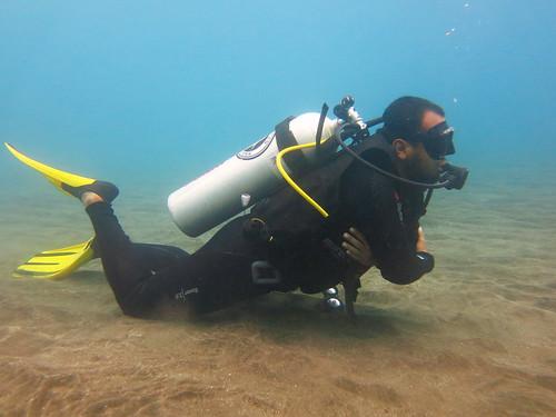 Salah satu metode observasi Dugong (Selam)