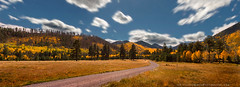 The Road Less Traveled (StephanieGreerPhotography.com) Tags: autumn travel tourist tourism gold orange green field serene aspen landscape fall nature canon dslr stephaniegreer stephaniegreerphotography clouds leaves trees foliage mountains road yellow blue beautiful scenic panorama panoramic motion arizona season pretty seasons golden traveler vacation explore explorer adventure discover natural woods forest discovery