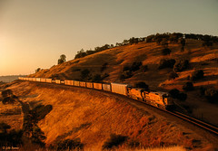 UP 9109 West at James, CA (thechief500) Tags: featherriverroute railroads up unionpacific c408 sunset