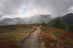 path to the clouds (koaxial) Tags: p9174105p1ma koaxial südtirol speikboden mountains berge clouds fog mist nebel way path pfad weg hiking