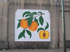 OH Dayton - Mural 41 (scottamus) Tags: dayton ohio montgomerycounty mural painting art building wall graffiti