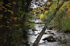 IMG_2299 (sambhensley) Tags: canoneos50d munising mi water falls foliage