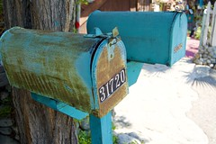 Mailboxes (Jason Rosenberg) Tags: blue mailboxes mail letters numbers usps tree address postboxes postbox aqua delivery nikon nikond5300 outside rust