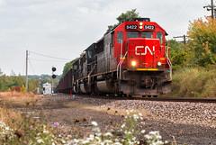 Departing RX (Wheelnrail) Tags: cn canadian national ble bessemer lake erie pennsylvania train trains iron ore albion emd sd60 loco signal signals flower