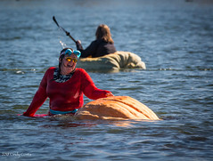 _MC_3169 (matxutca (cindy)) Tags: pumpkin regatta daybreak southjordan utah race lake fall costumes halloween crowds event outdoors neighborhood community
