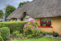 Thatched-Roof Cottage (Runemaker) Tags: irish ireland thatchedroof adare village county limerick house roof window garden flowers