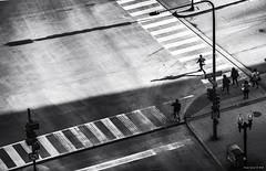 The latecomer - Il ritardatario (alfapegaso) Tags: street chicago