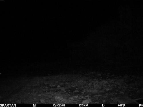2018-10-30 23:33:37 - Crystal Creek 2