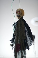 Halloween 2018_5712_edited-1 (arx7) Tags: anant raut anantraut anantrautorg anantrautcom halloween spooky october 31st 31 october31st pumpkin carving contest kidsparty ghosts ghouls goblins costumes scary masks halloweenparty hauntedhouse jackolantern catpumpkin familycostume diadelosmuertos dayofthedead dayofthedeadpumpkin witch warlock broom blackcat skull skeleton wraith spirit undead deadshallrise cobweb