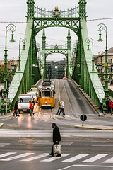 01/30 2017/11 (halagabor) Tags: nikon d610 budapest hungary bridge liberty szabadság híd green city citylife cityscape traffic symmetry nikkor architect architecture building iron steel urban street streetphoto streetphotography tram