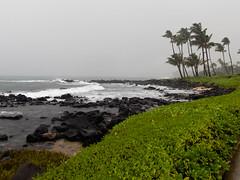 Rain! (xythian) Tags: hi kauai