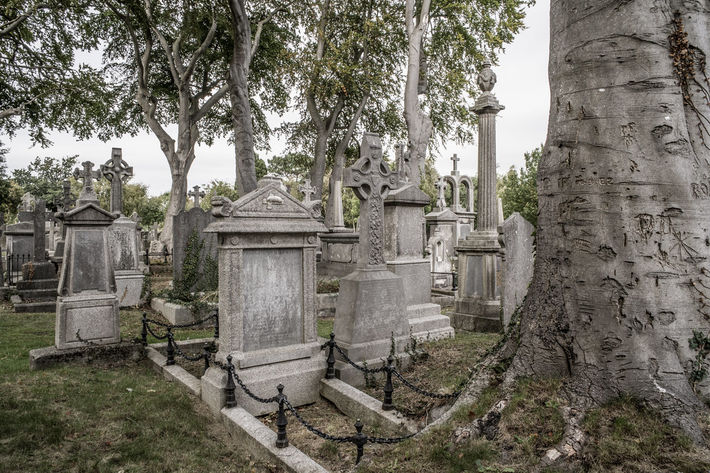 SEPTEMBER 2018 VISIT TO GLASNEVIN CEMETERY [ I USED A BATIS 25mm LENS AND I EXPERIMENTED WITH CAPTURE ONE]-144807