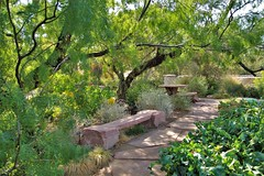 Garden Bench (Monkeystyle3000) Tags: springs preserve botanical garden las vegas nevada
