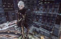 Of the Night (Jayde Askari / Pink Kitten) Tags: truth harley lelutka chloe maitreya lara mooh catwoman suit boots gloves bento headband ears astralia feline claws deetalez mina celtic swallow pixie sweet evil fresh hoops pink kitten blog avatar avatars second life isis freya hourglass physique tonic curvy
