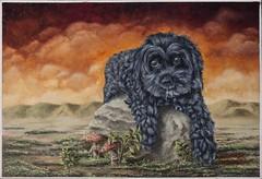 Cavapoo (Edwin M Escobar) Tags: dog poodle cavapoo rock mushrooms animal