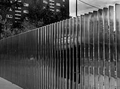 Reflects (Yo.el) Tags: reflect reflet blackandwhite noiretblanc street rue paris miroir miror beauty beauté children mystery mystère